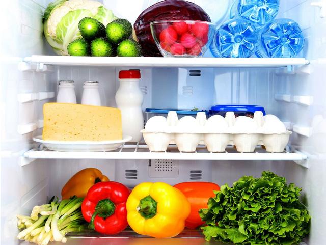 Tủ lạnh là công cụ giúp cho vấn đề dự trữ thực phẩm trở nên thuận lợi hơn